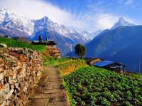 Life Himalaya Trekking Pvt. LTd (6) - Travel Agencies