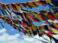 Swotah Travel and Adventure (5) - Travel Agencies