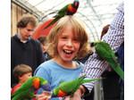 Vakantie Verhuur Nederland. Jouw favoriete Vakantiehuis! (3) - Vakantie verhuur