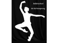 Balletschool de Kattensprong - Music, Theatre, Dance