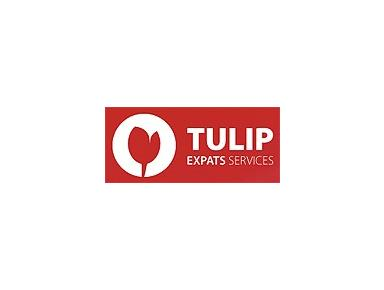 Tulip Expats services - Financial consultants