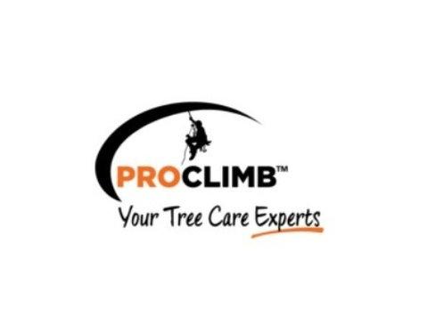 Pro Climb Tree Care - Gardeners & Landscaping