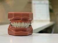 Glow Dental - Stonefields, Auckland (5) - Dentists