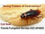 Friends Fumigation Services (3) - Home & Garden Services