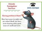Friends Fumigation Services (9) - Home & Garden Services