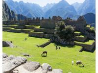 GREEN PERU ADVENTURES, travel agency (3) - Travel Agencies