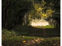 Monte Amazonico (1) - Agencias de viajes