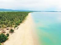 Palawan Explore - Travel sites