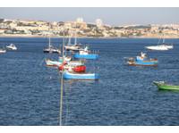 Lisboasightseeing (3) - Travel Agencies