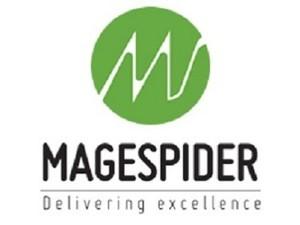 magespider Infoweb Pvt. Ltd. - Consultancy