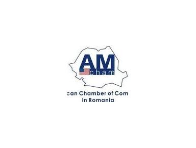 American Chamber of Commerce in Romania (AmCham Romania) - Chambers of Commerce