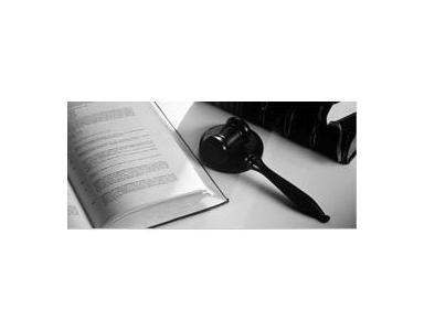 Padva & Partnersl - Юристы и Юридические фирмы