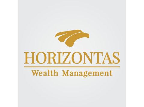 Horizontas FZE - Finanzberater