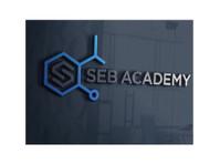 Seb Academy Chemistry Tuition Singapore (1) - Tutors