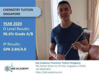 Seb Academy Chemistry Tuition Singapore (2) - Tutors