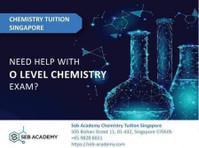 Seb Academy Chemistry Tuition Singapore (3) - Tutors
