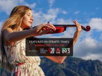 Stradivari Strings (1) - Music, Theatre, Dance