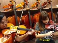 Stradivari Strings (6) - Music, Theatre, Dance
