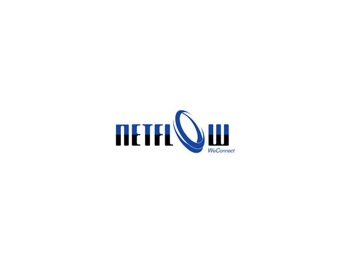 Netflow Integrated Pte Ltd - Electrical Goods & Appliances