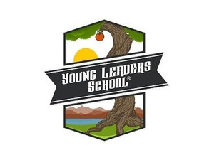 Young Leaders School - Playgroups & After School activities