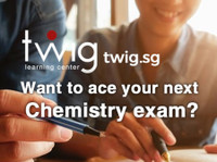 Twig Learning Center Pte Ltd (1) - Tutors