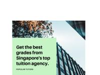 Popular Tutors Singapore (6) - Tutors
