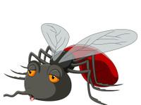 Pest Control Near Me (1) - Gardeners & Landscaping