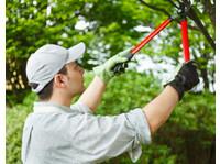 Garden Services Johannesburg (6) - Home & Garden Services