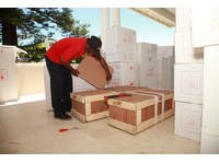 AGS Frasers South Africa - Johannesburg (2) - Removals & Transport