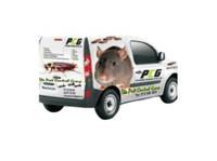 Pro Pest Control Johannesburg (1) - Home & Garden Services