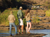Jewel of Africa Safari tour (4) - Travel sites
