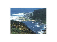 Southern circle tours & safaris    Garden Route Tours (1) - Travel sites