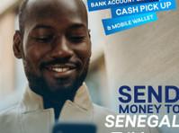 Sikhona Money Transfers (1) - Money transfers