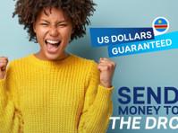Sikhona Money Transfers (3) - Money transfers