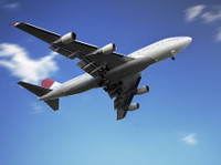 Optima International Solutions (6) - Removals & Transport