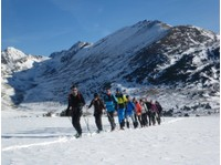 Discover Pyrenees (5) - Travel Agencies