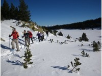 Discover Pyrenees (7) - Travel Agencies