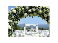 Ibiza For Wedding - Conference & Event Organisers