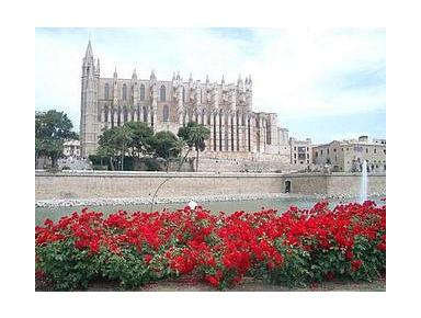 Mallorca Tour Guides S.L. - City Tours
