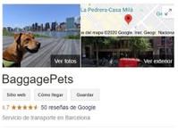 BaggagePets (1) - Pet Transportation