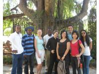 Paraninfo | Spanish Language School (6) - Language schools