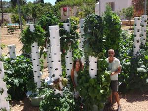 Ibiza Farm S.L. - Organic food