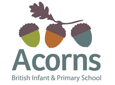 Acorns Infant & Primary School - Mezinárodní školy
