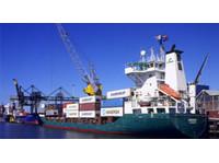 AMS Atlantic (3) - Umzug & Transport