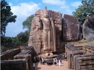 Aktivreisen Sri Lanka - Business & Networking