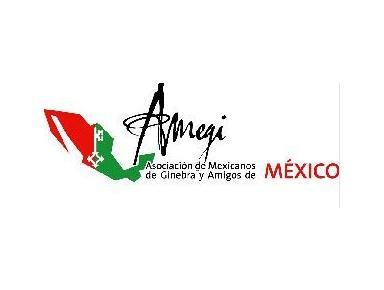 AMEGI - Asociaciones de extranjeros
