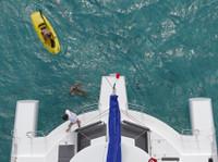 Catamarano Caraibi - Viaggi e Crociere a Vela (4) - Agenzie di Viaggio
