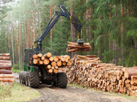 Timber Exchange (1) - Import/Export
