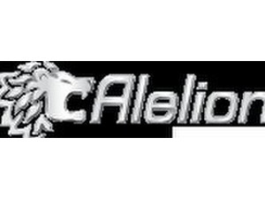 alelion Energy Systems Ab - Business & Networking