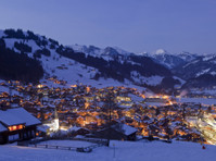 Bramble Ski (5) - Accommodation services